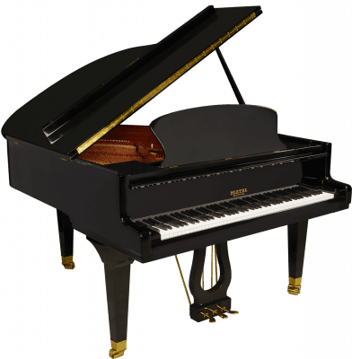 P170-BLK-2